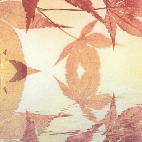 紅葉 水面の Android スマホ 壁紙