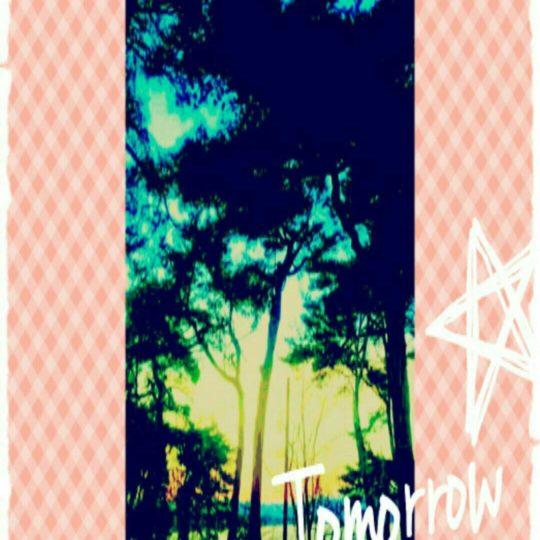 海辺 木の Android スマホ 壁紙