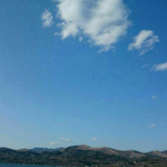 スワン 湖の Android スマホ 壁紙