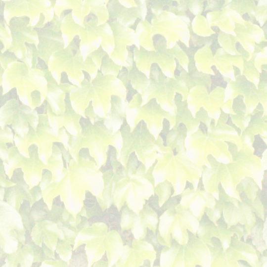 葉模様黄の Android スマホ 壁紙