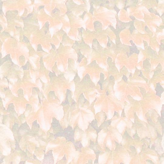 葉模様橙の Android スマホ 壁紙