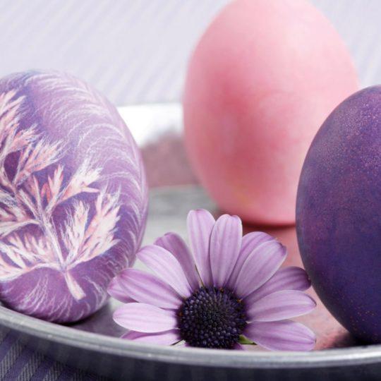 自然花紫卵の Android スマホ 壁紙