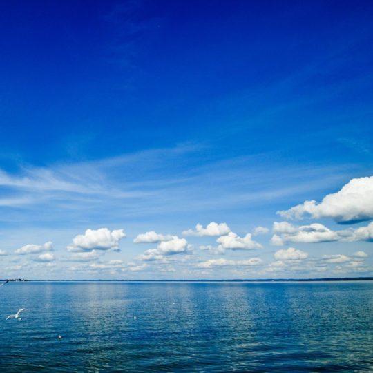 風景海空青の Android スマホ 壁紙