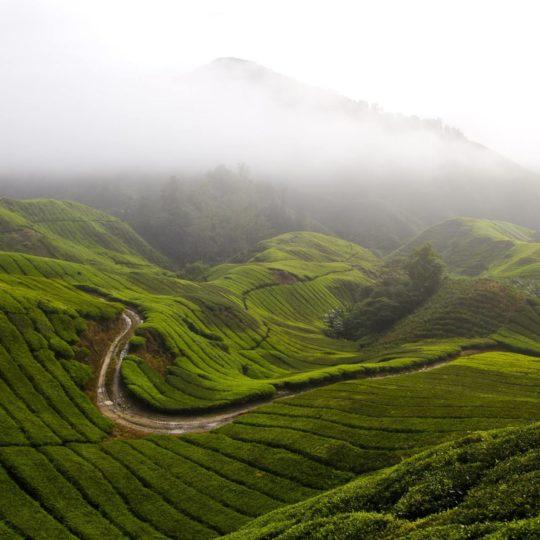 景色山緑の Android スマホ 壁紙