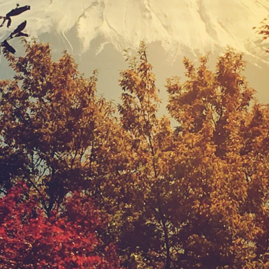 Mt. Fuji autumn leaves Android SmartPhone Wallpaper