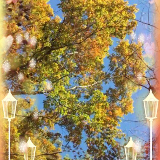 Street Tree Street Lamp Android SmartPhone Wallpaper