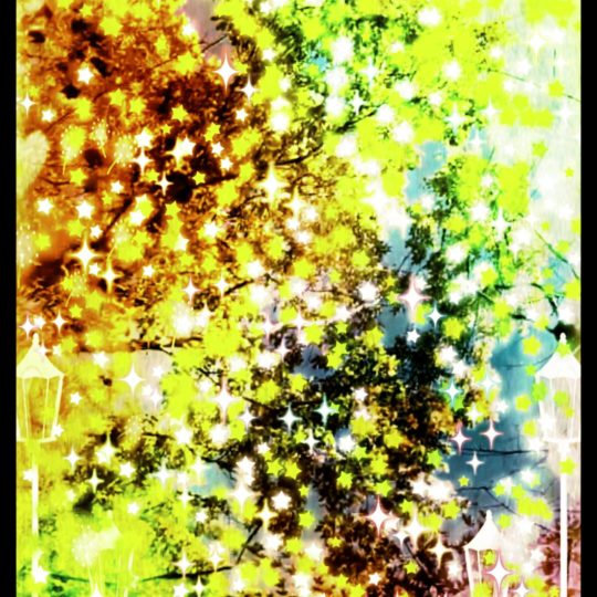 Street tree star Android SmartPhone Wallpaper