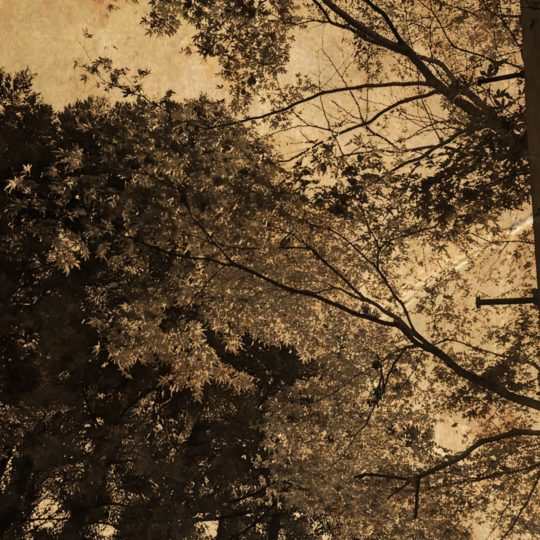 Autumn leaves sepia Android SmartPhone Wallpaper
