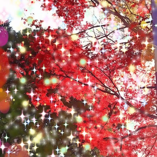 Autumn leaves light Android SmartPhone Wallpaper