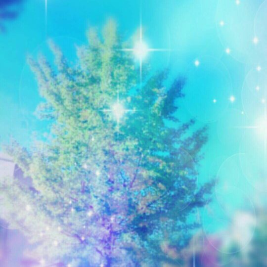 Tree Scenery Android SmartPhone Wallpaper