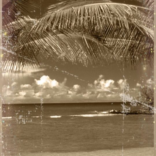 Tropical Sepia Android SmartPhone Wallpaper