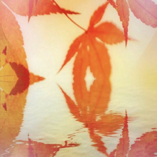 Autumn leaves lake Android SmartPhone Wallpaper