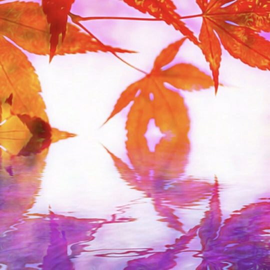 Autumn foliage water surface Android SmartPhone Wallpaper