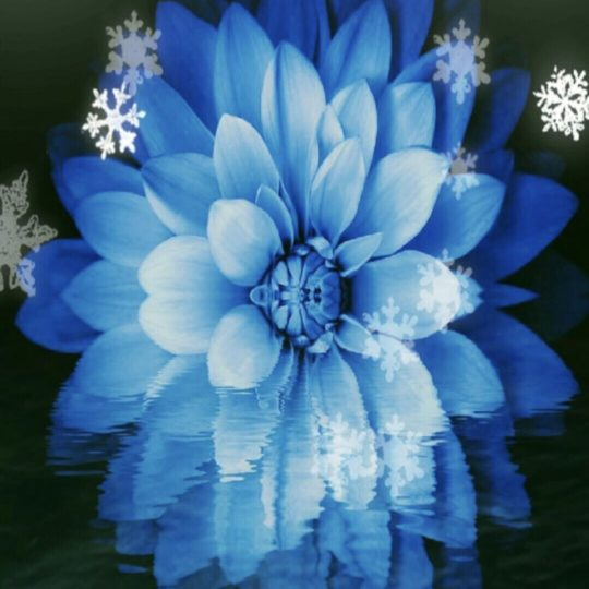 Flower crystal Android SmartPhone Wallpaper