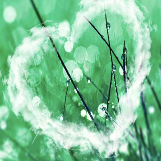 Heart Green Android SmartPhone Wallpaper