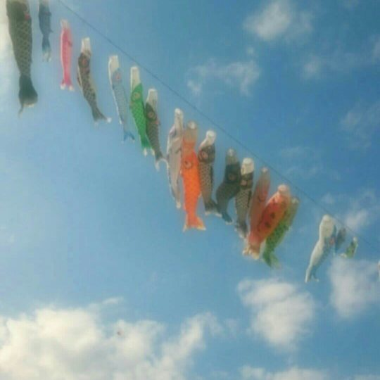 Carp streamer sky Android SmartPhone Wallpaper