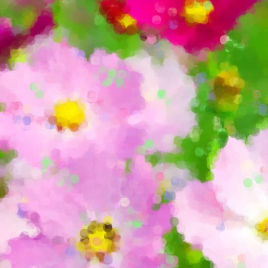Cosmos fall cherry-blossoms Android SmartPhone Wallpaper