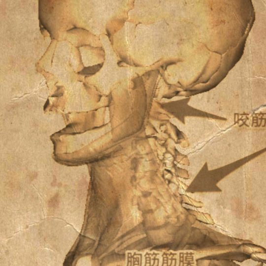 Skull Sepia Android SmartPhone Wallpaper