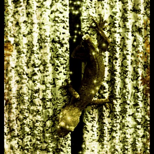 Lizard Sepia Android SmartPhone Wallpaper