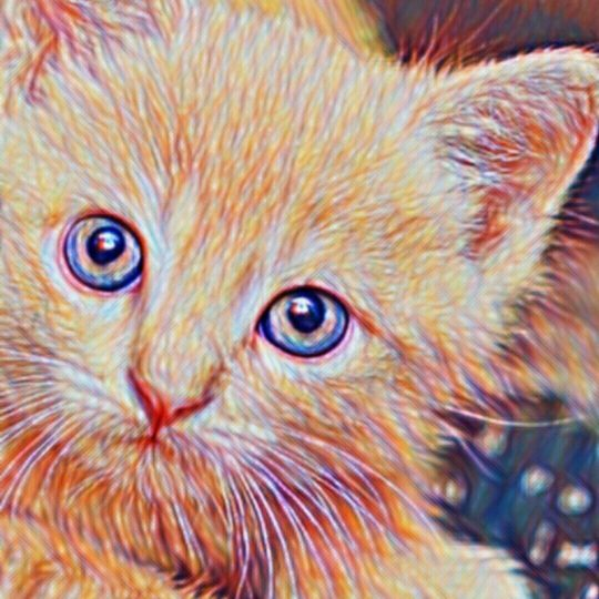 Cat Drawing Android SmartPhone Wallpaper
