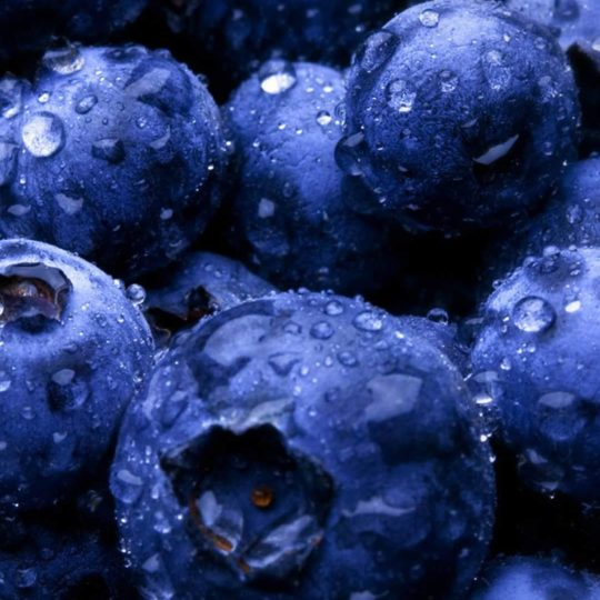 Food blueberry blue Android SmartPhone Wallpaper