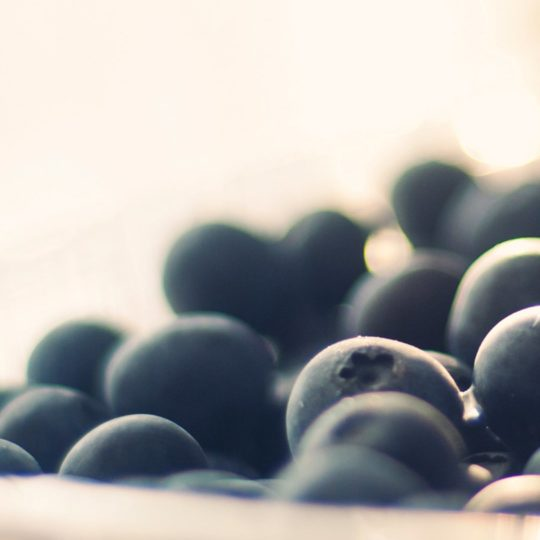 Food blueberry Android SmartPhone Wallpaper