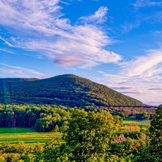 Landscape meadow mountain Android SmartPhone Wallpaper