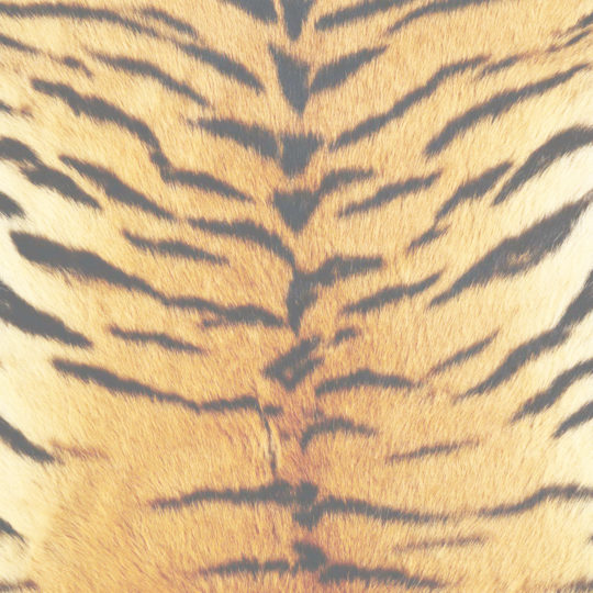 Fur pattern tiger yellow Android SmartPhone Wallpaper