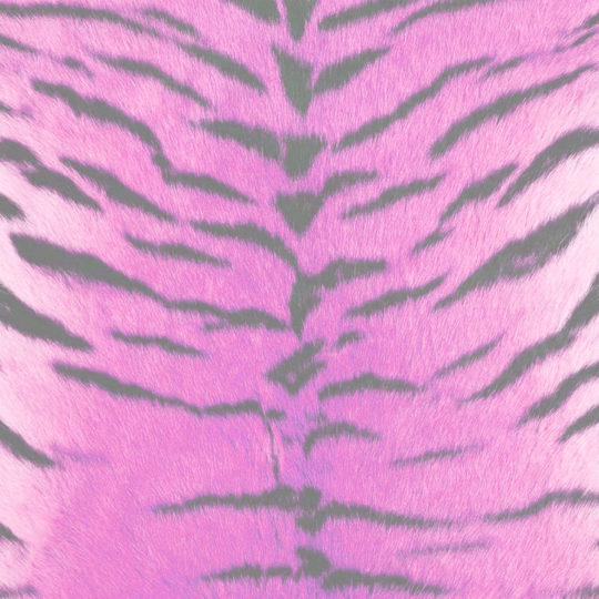 Fur pattern tiger Red-purple Android SmartPhone Wallpaper