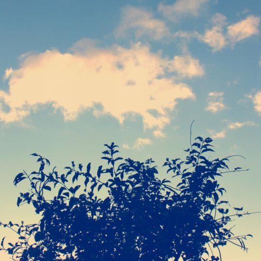 Landscape Ki sky Android SmartPhone Wallpaper