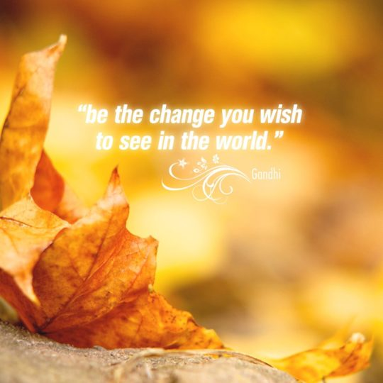 Natural fallen leaves text Android SmartPhone Wallpaper