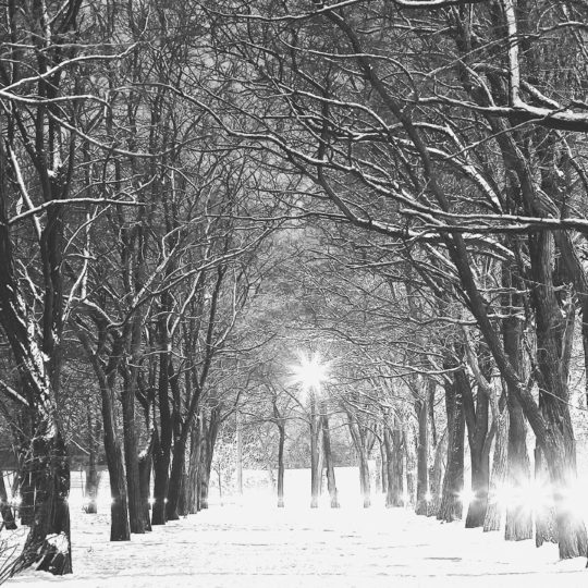 Monochrome landscape Ki snow Android SmartPhone Wallpaper