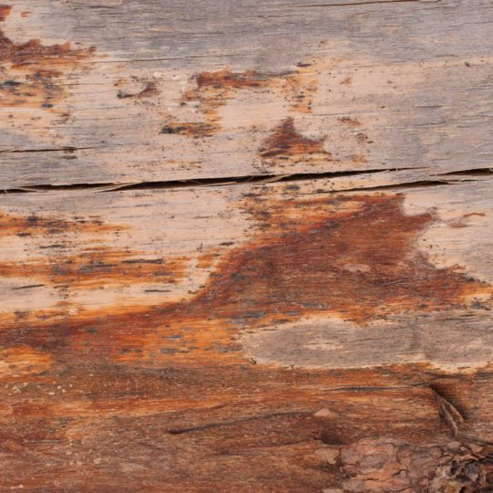 wall wood brown Android SmartPhone Wallpaper