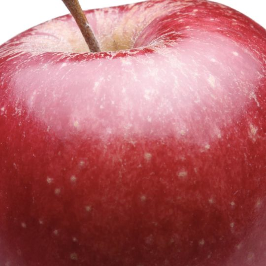 Food apple red Android SmartPhone Wallpaper