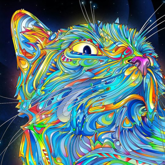 Cool cat blue Android SmartPhone Wallpaper