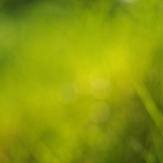 Pattern blur green Android SmartPhone Wallpaper