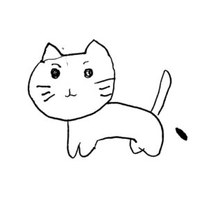 Illustrations cat white