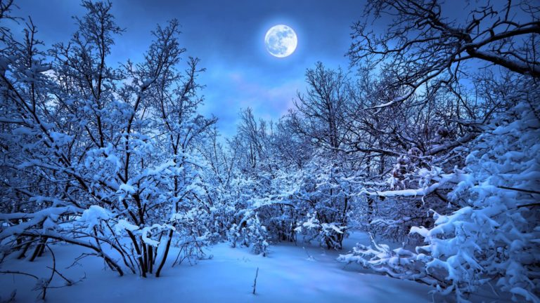 Landscape snow forest Desktop PC / Mac Wallpaper