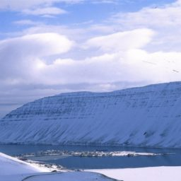 Landscape snow iPad / Air / mini / Pro Wallpaper
