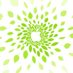 apple logo Omotesando iPad / Air / mini / Pro Wallpaper
