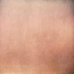 Pattern peach iPad / Air / mini / Pro Wallpaper