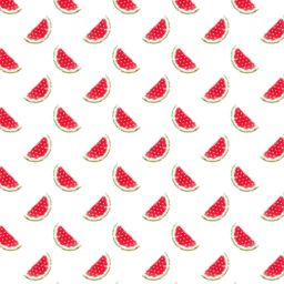 Pattern illustration fruit watermelon red women-friendly iPad / Air / mini / Pro Wallpaper