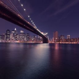 Landscape night scene harbor bridge iPad / Air / mini / Pro Wallpaper