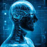 Cool illustrations X-ray human