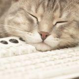 Cat keyboard for woman