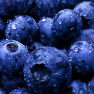 Food blueberry iPhone4s Wallpaper