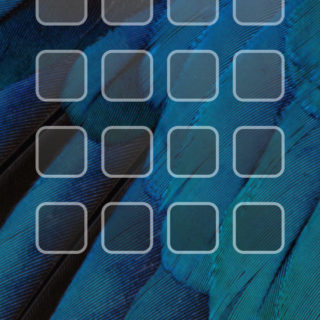 iOS9 birds blue shelf cool iPhone4s Wallpaper