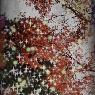 Autumn leaves light iPhone5s / iPhone5c / iPhone5 Wallpaper