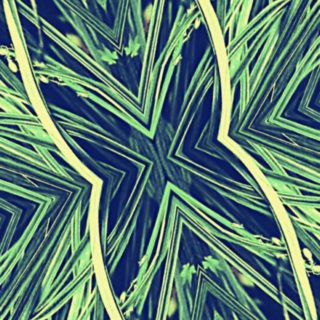 Pattern Cool iPhone5s / iPhone5c / iPhone5 Wallpaper