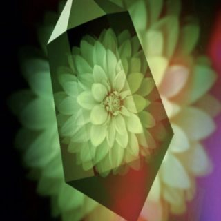 Flower crystal iPhone5s / iPhone5c / iPhone5 Wallpaper